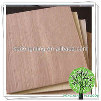 High Quality Commercial Bintangor Plywood Laminate Sheets