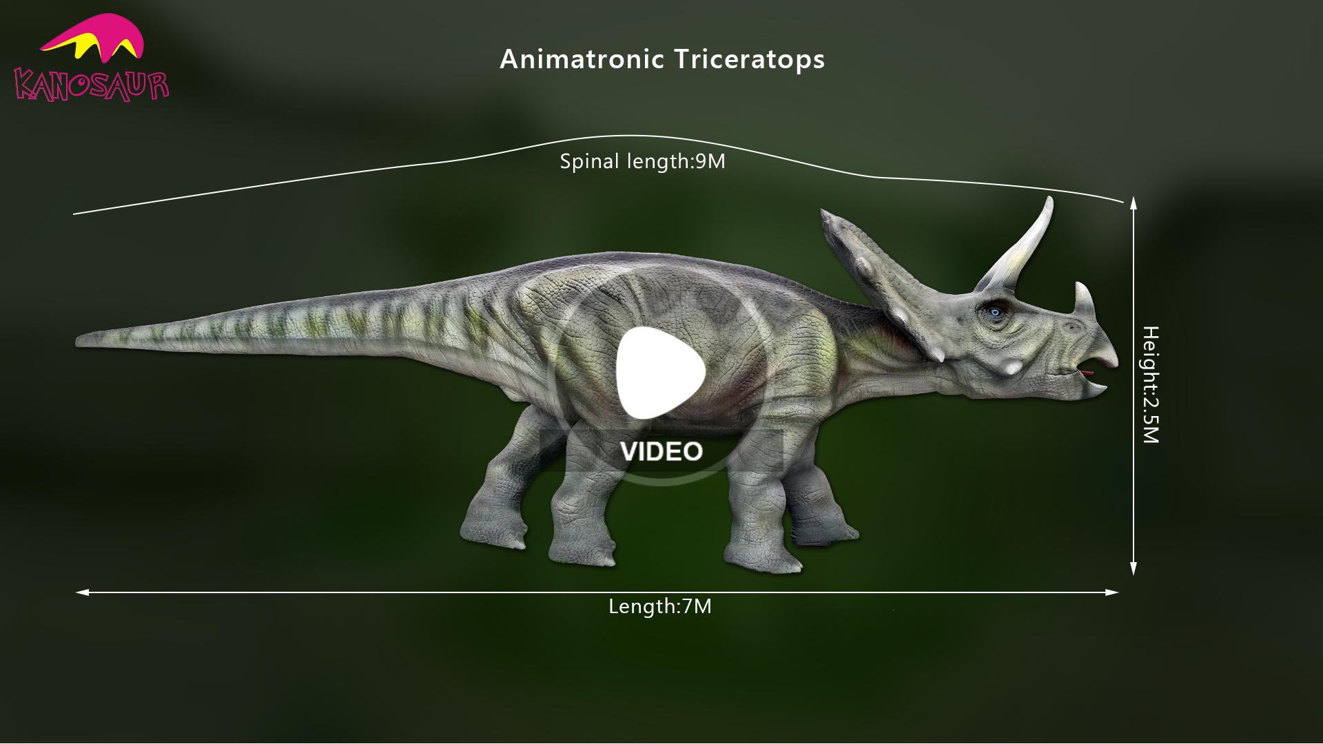 KANO-011 Cheap Promotional Giant animatronic diplodocus