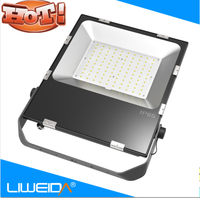 led light projector lamp100w 200watt 150w