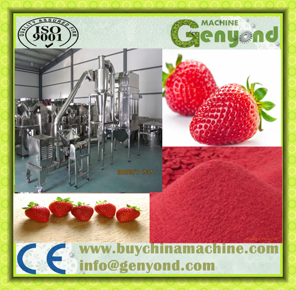 Industrial egg powder maker /strawberry juice powder making machine