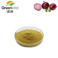 Best Price 100% Natural Onion Extract,Onion Powder