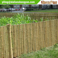 Cheap Bamboo Fencing Rolls