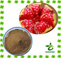 Best selling and high quality pomegranate extract powder ellagic acid with free sample