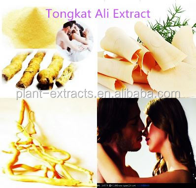2016 Latest tongkat ali coffee with tongkat ali extract 100:1