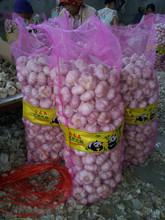 10KG MESHBAG PACKING RED GARLIC FROM CHINA
