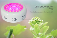 Apollo hydroponic grow light 630nm red led panel grow light 75W greenhouse flower/plant growth