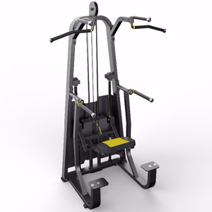 DFT-609 Dip/Chin Assist/fitness equipment/indoor sports machine