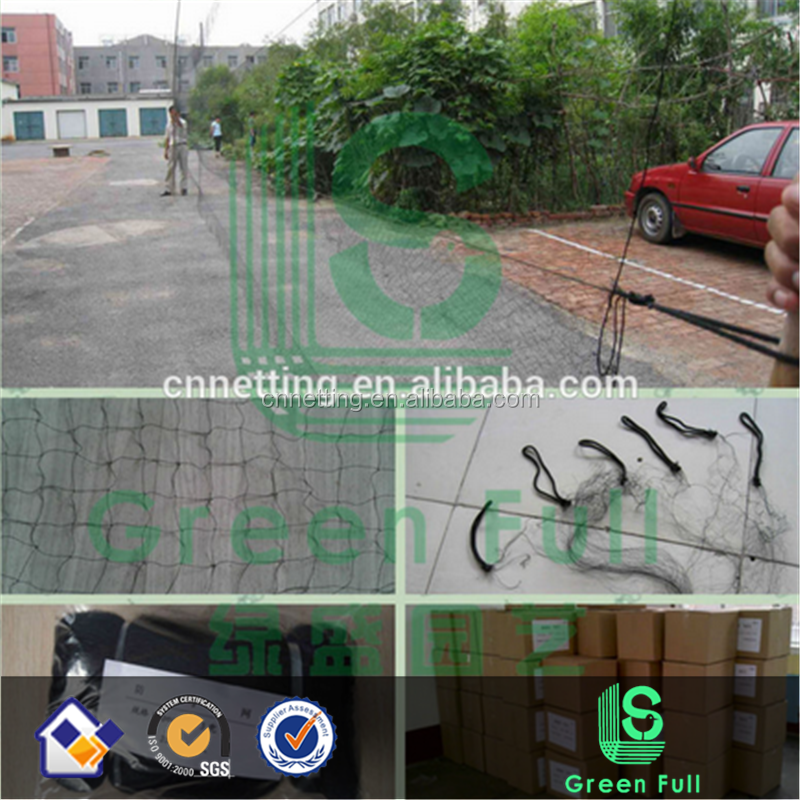 100% Nylon bird mist net Catching bird net from China