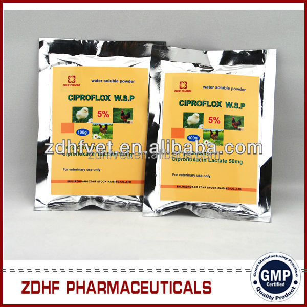 Bacterial viral medicine Ciprofloxacin hcl plus interferon Soluble Powder Poultry thermally plague disease treatment