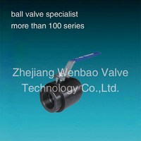 2PC Forged Steel A105 Ball Valve /800lb Forged Steel Ball Valve A105N