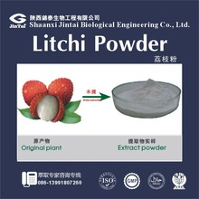 Hot Selling Litch Concentrate Fruit Juice Powder