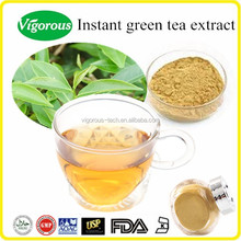 natural free sample 20%Polyphenols instant green tea extract powder/Camellia sinensis