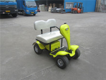 Curtis control cheap garden golf cart for sale with one seat