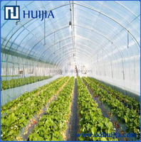 Agriculture greenhouse film / plastic transparent clear film