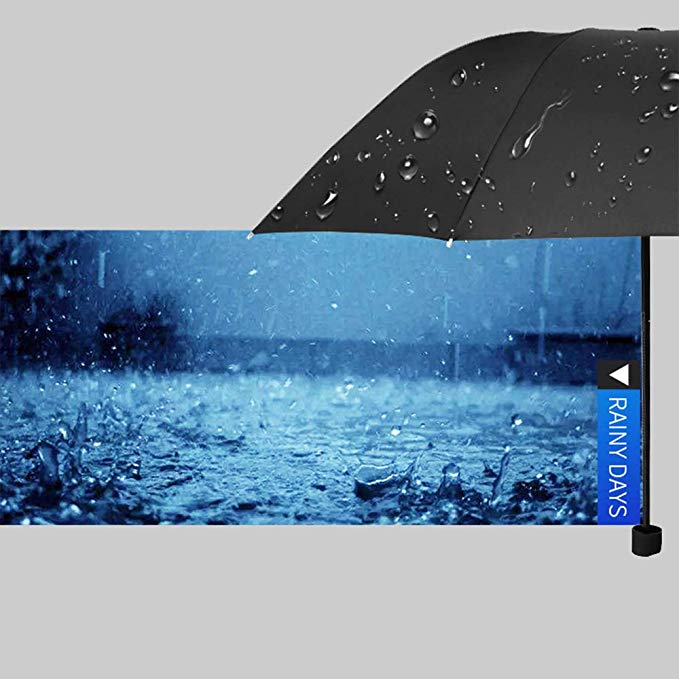 Cheap Manual 8 Ribs Upgraded Compact Travel Umbrella Folding Umbrellas for Wind/Rain with Matte Handle