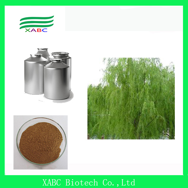 100% Natural White Willow Bark Extract/White Willow Bark Extract Salicin 10%-98%/CAS138-52-3