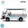CE Approved Mini Electric Pick up Truck with full Roof