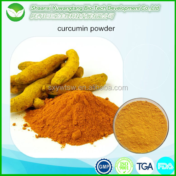 Natural 90% 95% Curcumin Powder Turmeric Root Extract
