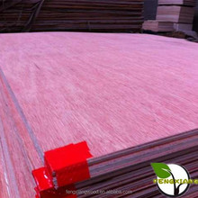 3-ply tropical plywood for Indonesia