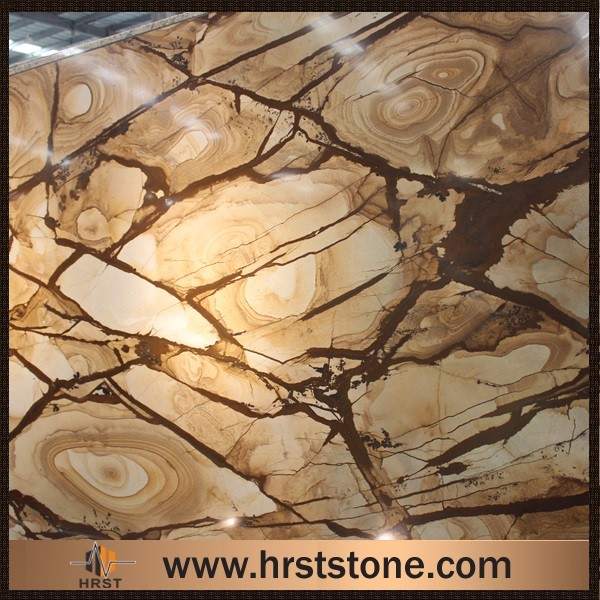 A grade golden petrified stone wood granite slab