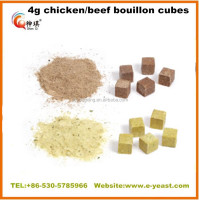 Halal bouillon cube, seasoning cube and powder, hot sell like maggie chicken bouillon cube