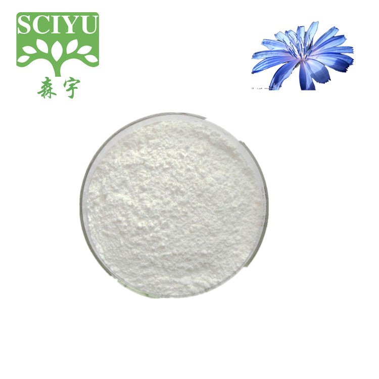 High quality 95% 90% HPLC bulk inulin Chicory Extract powder Inulin