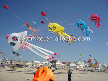 15m jellyfish kite