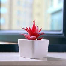 Best selling white ceramic indoor mini square artificial succulents flower plant pots for sale