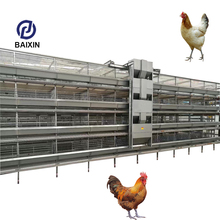 Automatic Chicken Layer House Galvanized Poultry Chicken Cage Q235 Steel Wire Mesh Laying Hen Battery Cages For Ghana Farm Sale