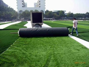 Colorful Fake Grass for Track & Sport Fields