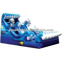 2016 new Dolphin curve wave slide Slide
