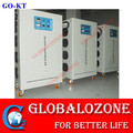50g/hr elecrical ozone generator for agricultural greenhouse