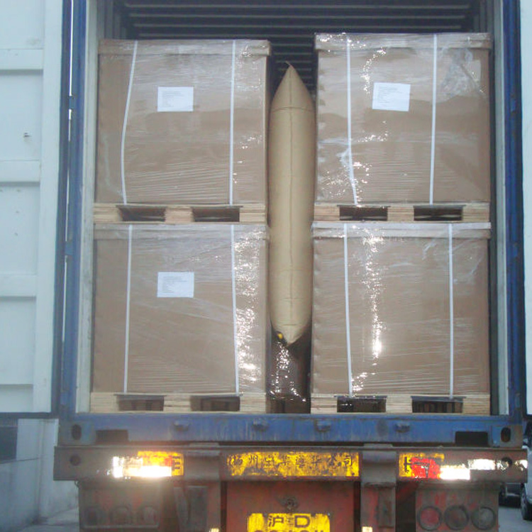 dunnage air bags filling the container gaps
