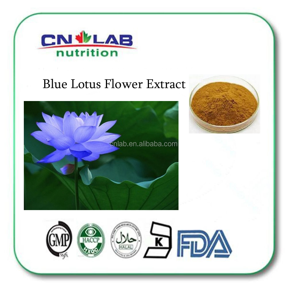 Gmp Certified Low Price Blue Lotus Flower Extract Nymphaea