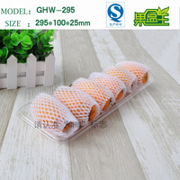 Food grade clear pet fruit and vegetable long plastic packaging tray