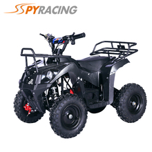 800W electric small ATV for children