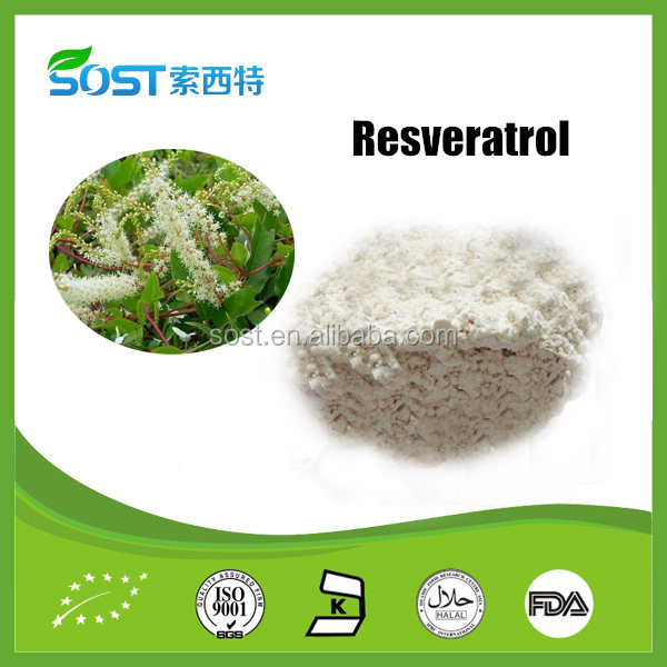 Super quality and manufacturer supply resveratrol powder