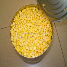 sweet corn canned vegetable canend food