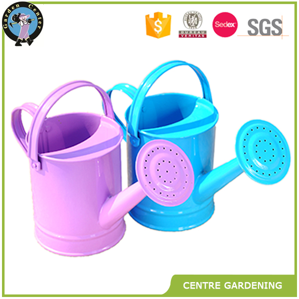 Hot sale mini flowers plant watering can
