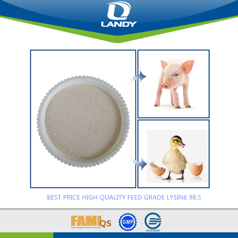 BEST PRICE HIGH QUALITY FEED GRADE LYSINE 98.5