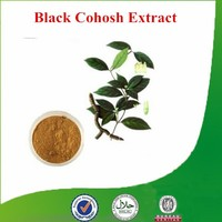 Factory supply Natural & Pure high-quality Cimicifuga racemosa extract, Triterpenoid saponis, Black Cohosh Extract