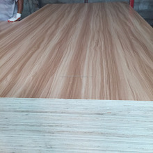17mm eucalyptus core melamine faced plywood for furniture