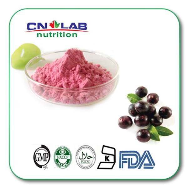 GMP,ISO Certified Acai Berry Extract Powder / Ratio extract 5:1, 10:1,20:1