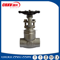 Socket welding and threaded end compact valves gate valve