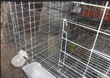 high quality new type cheap wire mesh pigeon transport cage