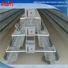 H Type Multi-Tier Pullet Chicken Cage For Layers