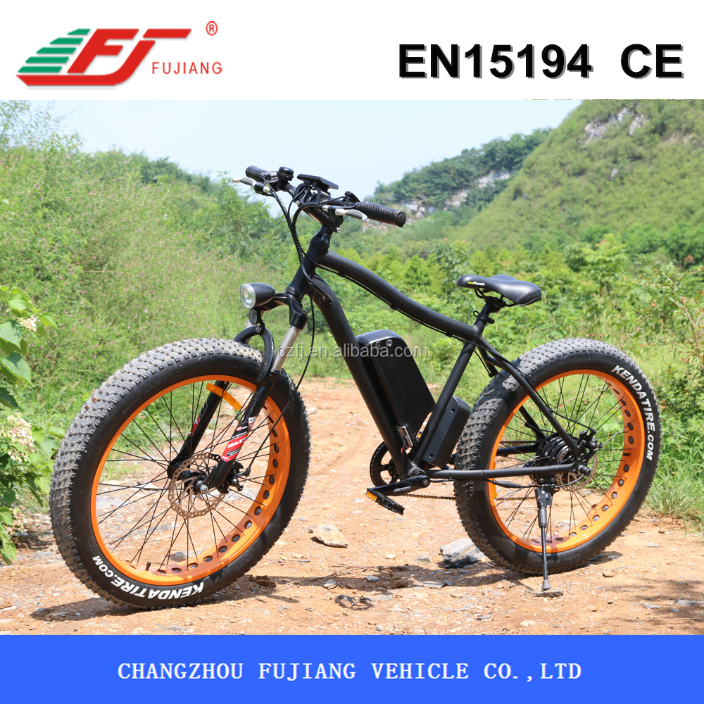 26 inch 500W new model electric cargo bicycle with EN15194