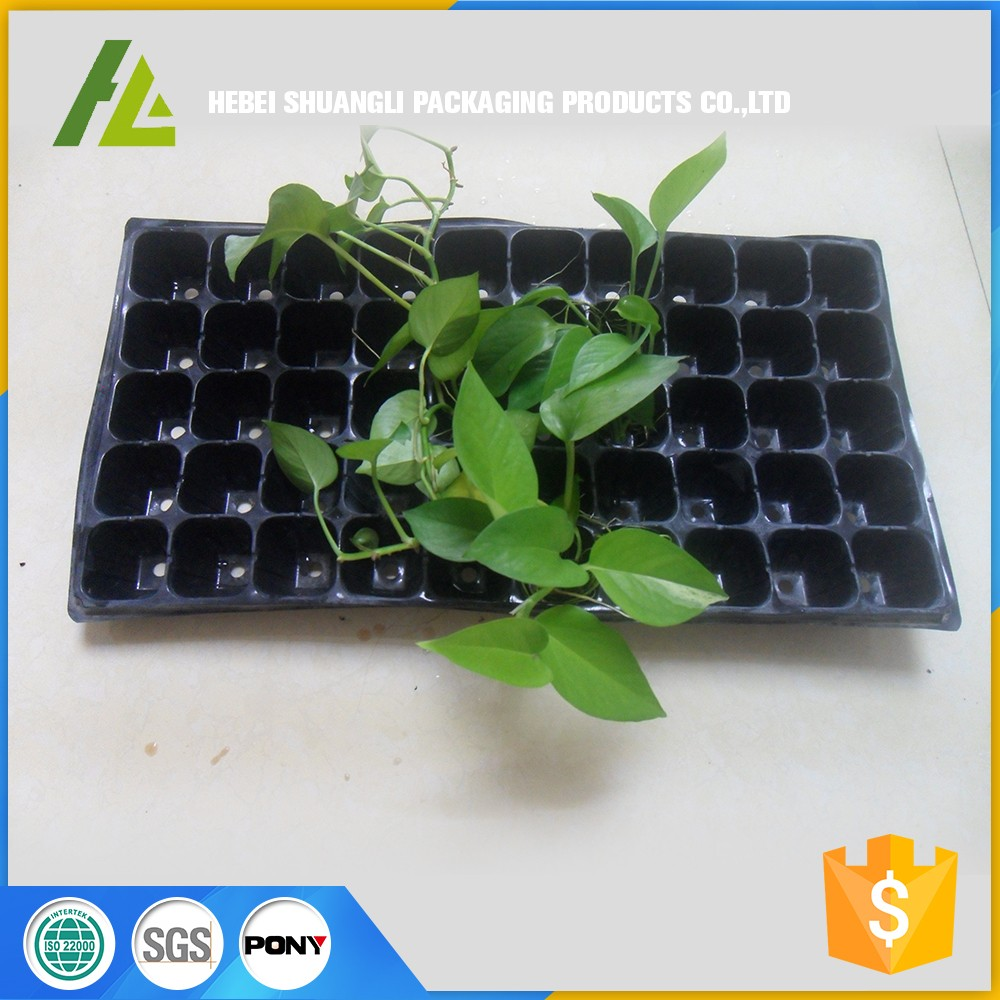PVC material Seedling Tray