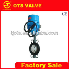 BV-LY-0073 cast iron electrical water float valve