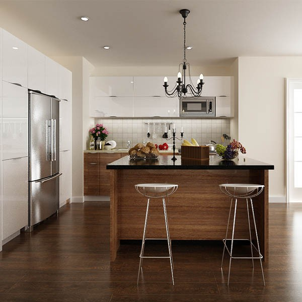 America Project Modern Kitchen Simple Design photos of cabinets